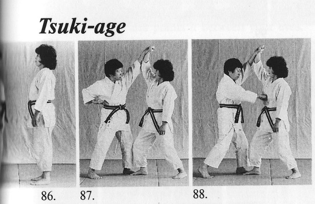 Tsuki-age (SZ)